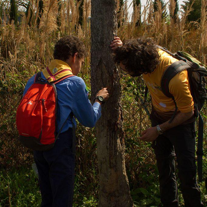 laboratori didattici nel parco del fiume savio