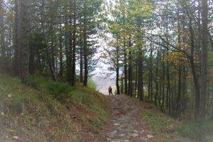 Camminate in Romagna
